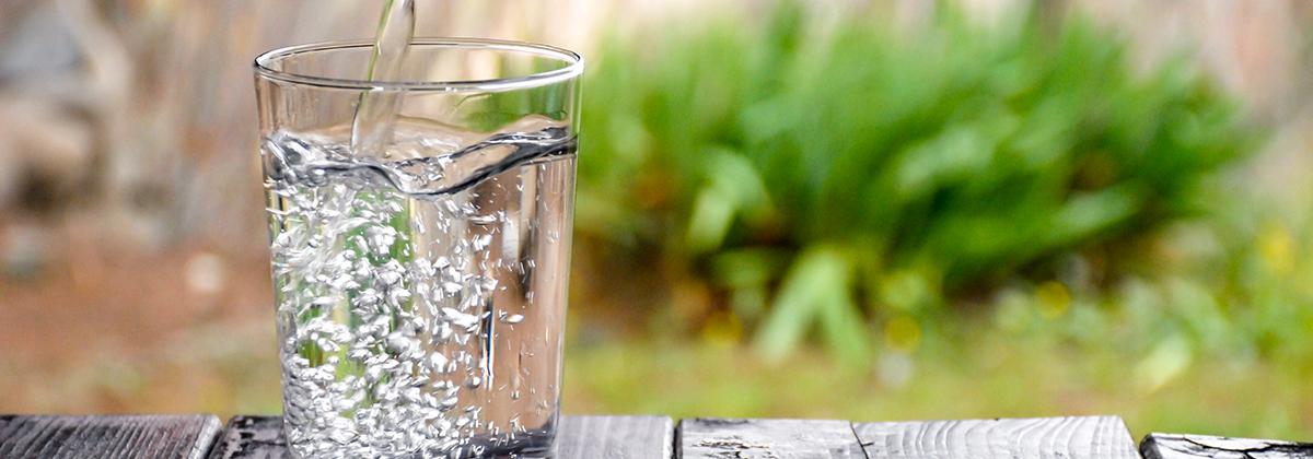 Gasatore per acqua purificatore acqua